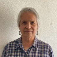 Carol Cruz - Online Therapist with 10 years of experience
