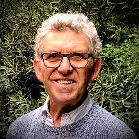 David  Shaw - Online Therapist with 41 years of experience
